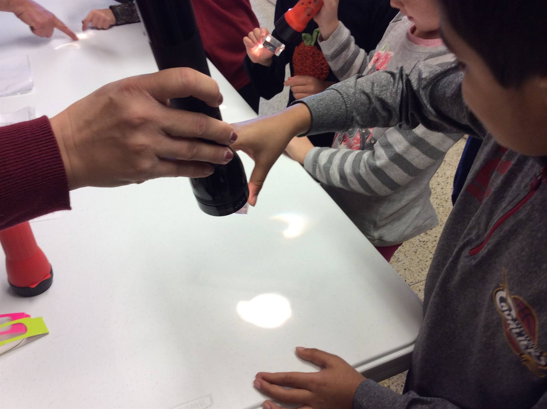 Learning about sound and light
