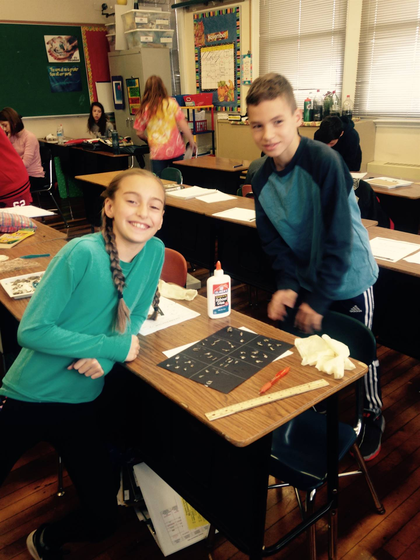 Students working with owl pellets