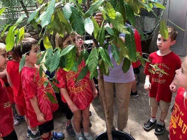 Kindergarten Field Trip Botanical Gardens