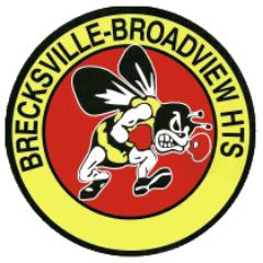 Brecksville Bee Icon