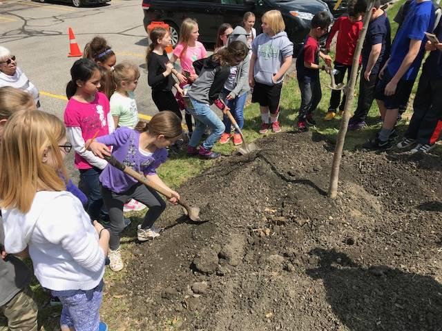 Kid planting tree