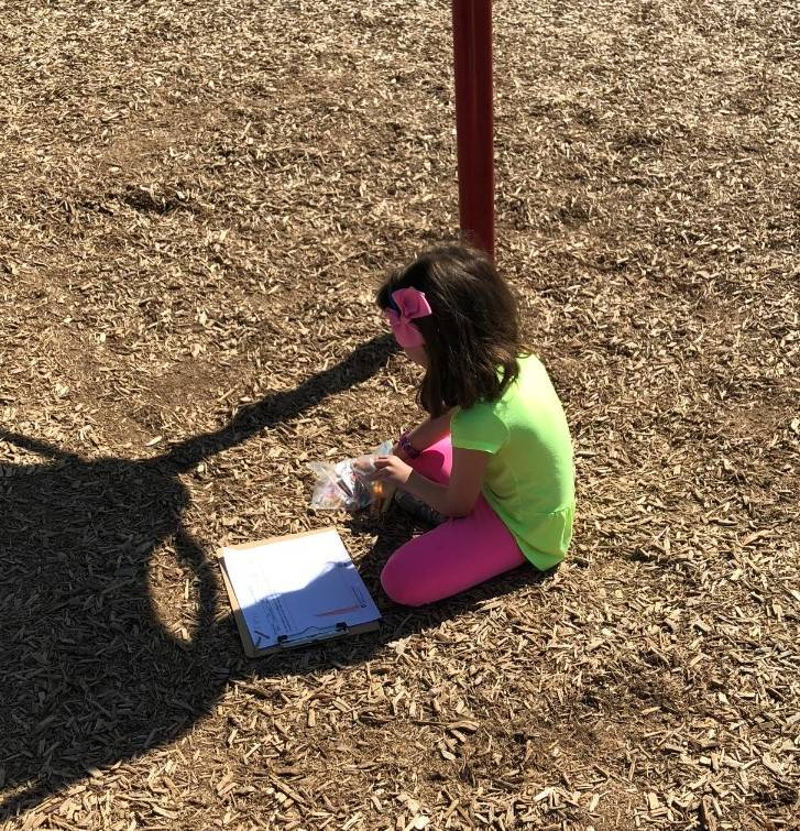 1st grade science on the playground