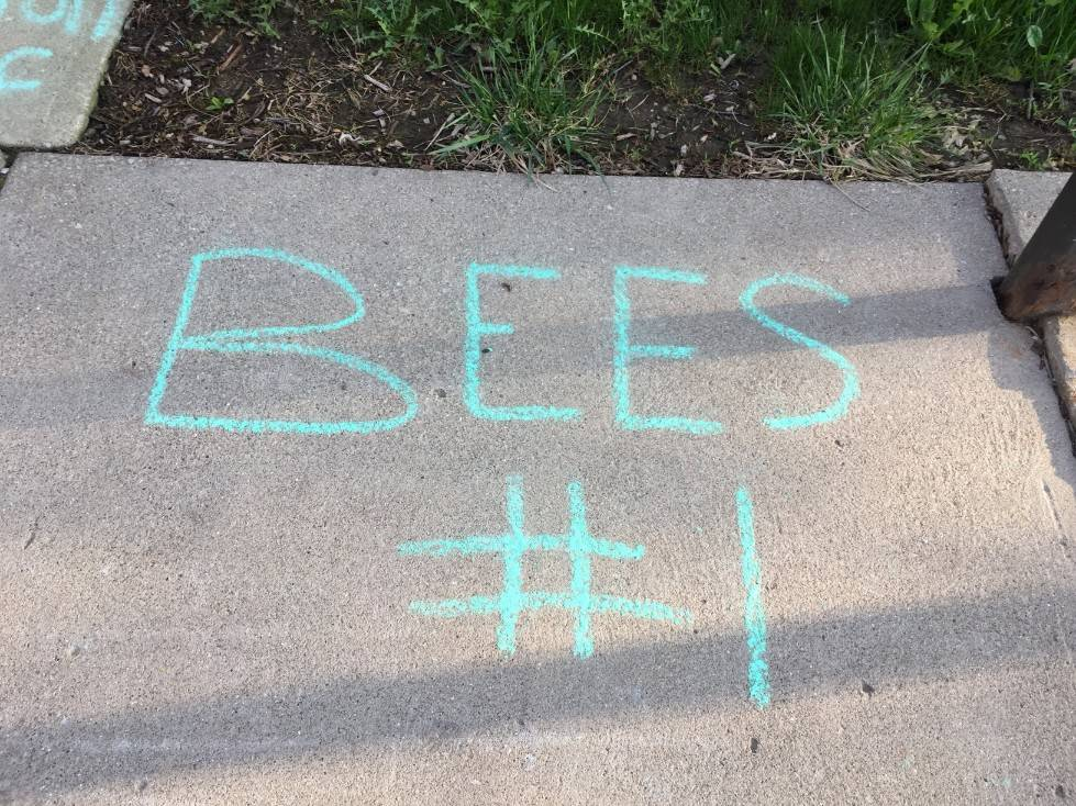 Staff Appreciation-sidewalk chalf designs-Bees #1