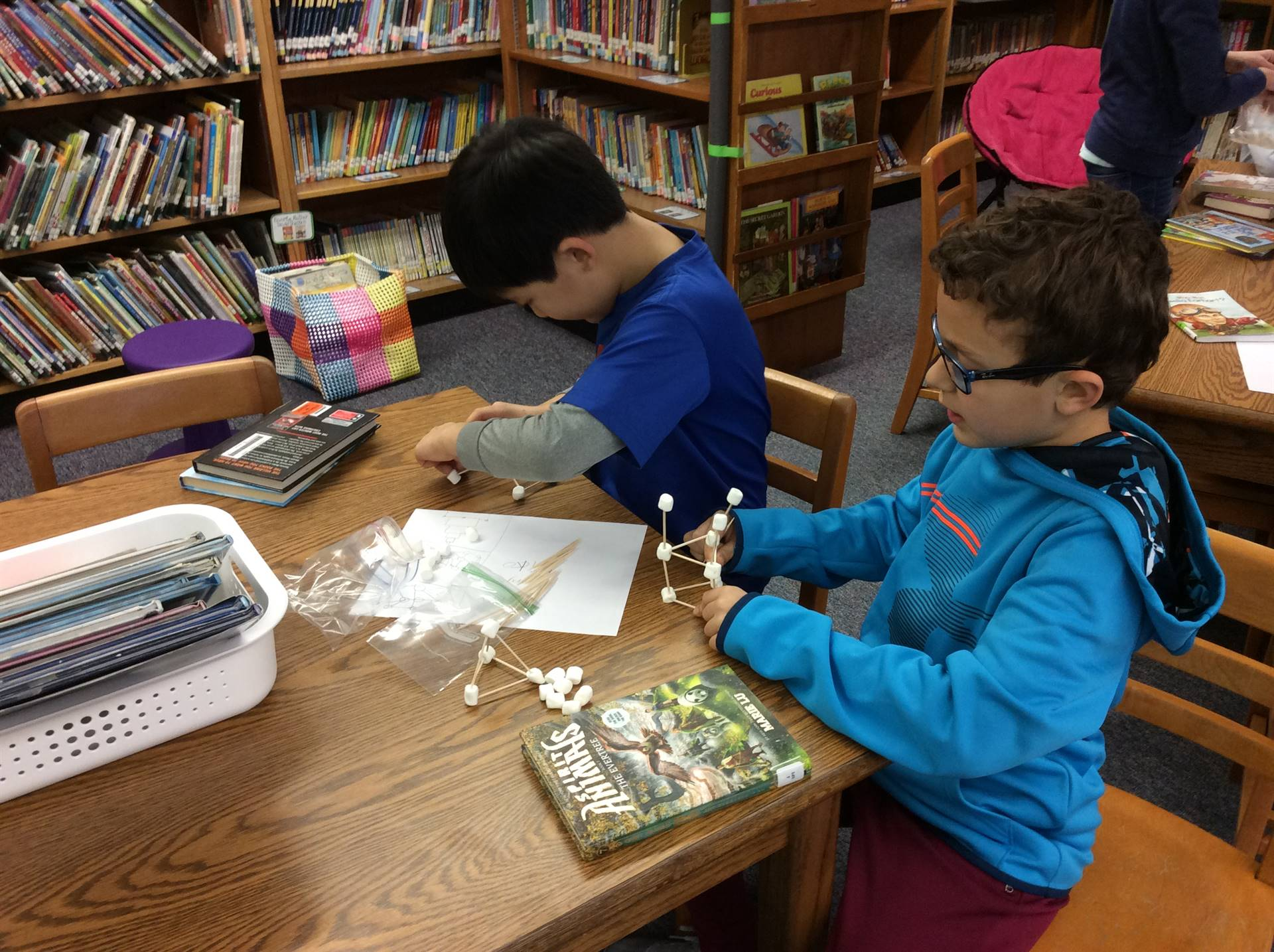 Library STEM Snowball Structures