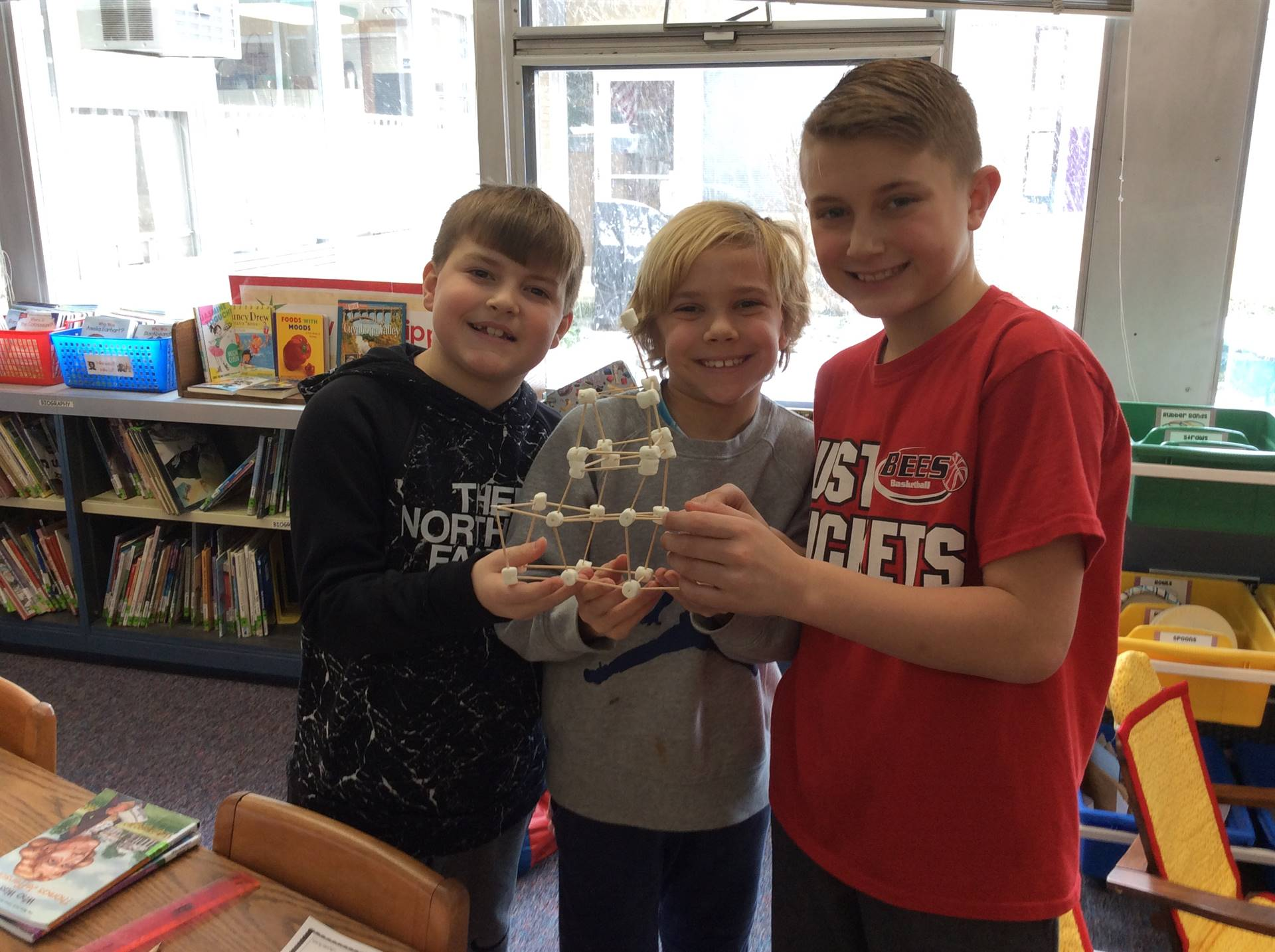 STEM - Snowball Structures