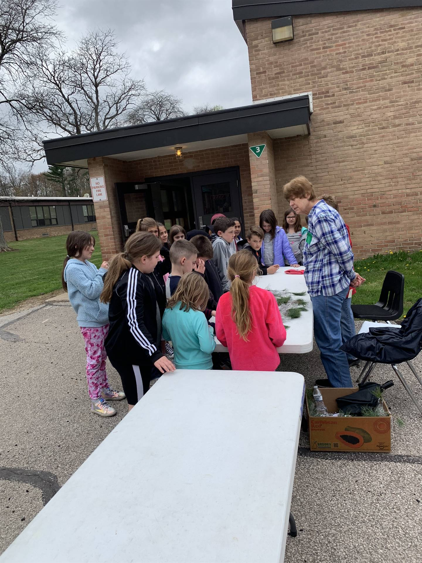 Many thanks to the Chippewa Garden Club for providing every third grader with a free tree to plant a