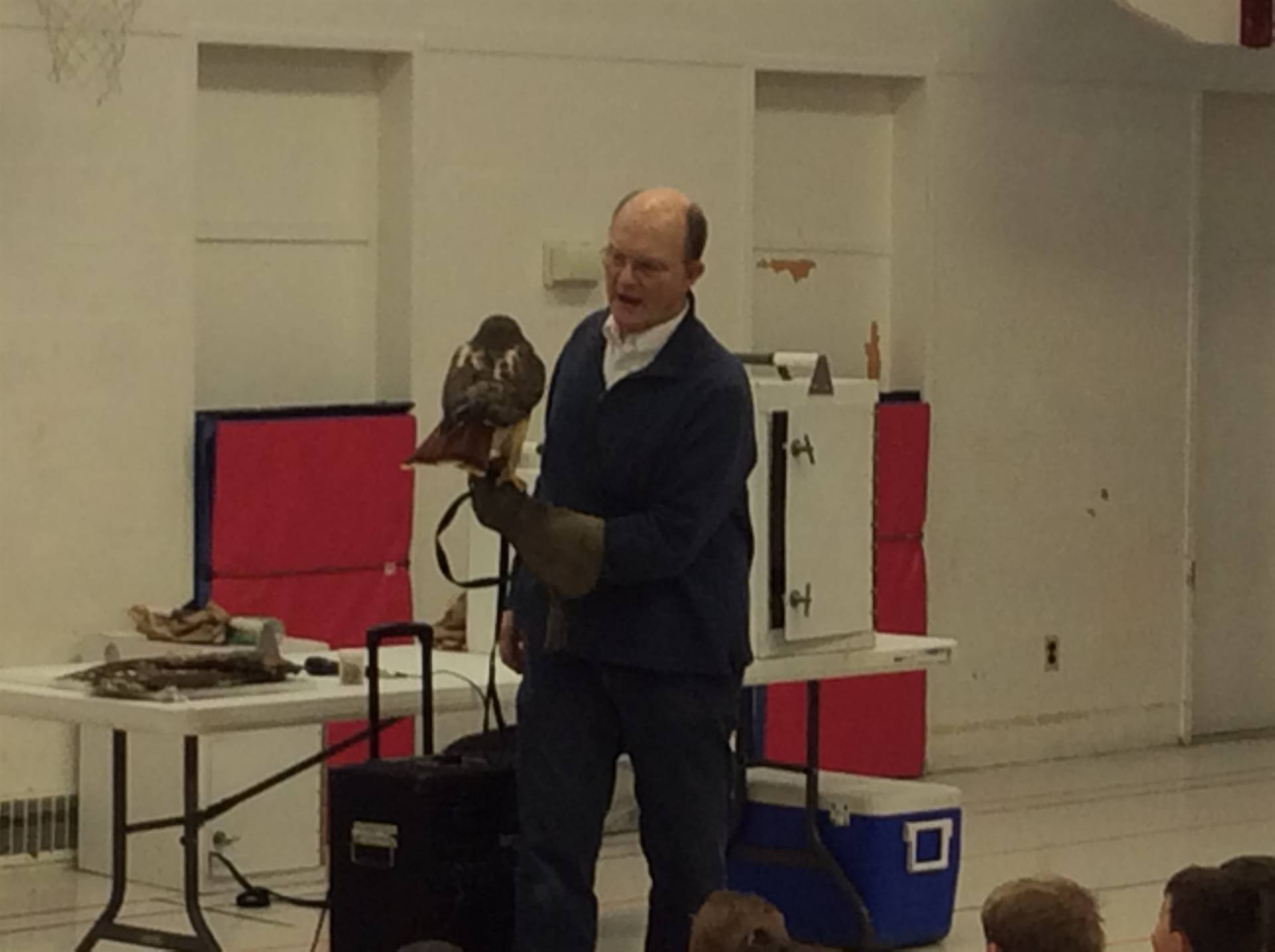 Assembly - A Naturalist from The Natural History Museum
