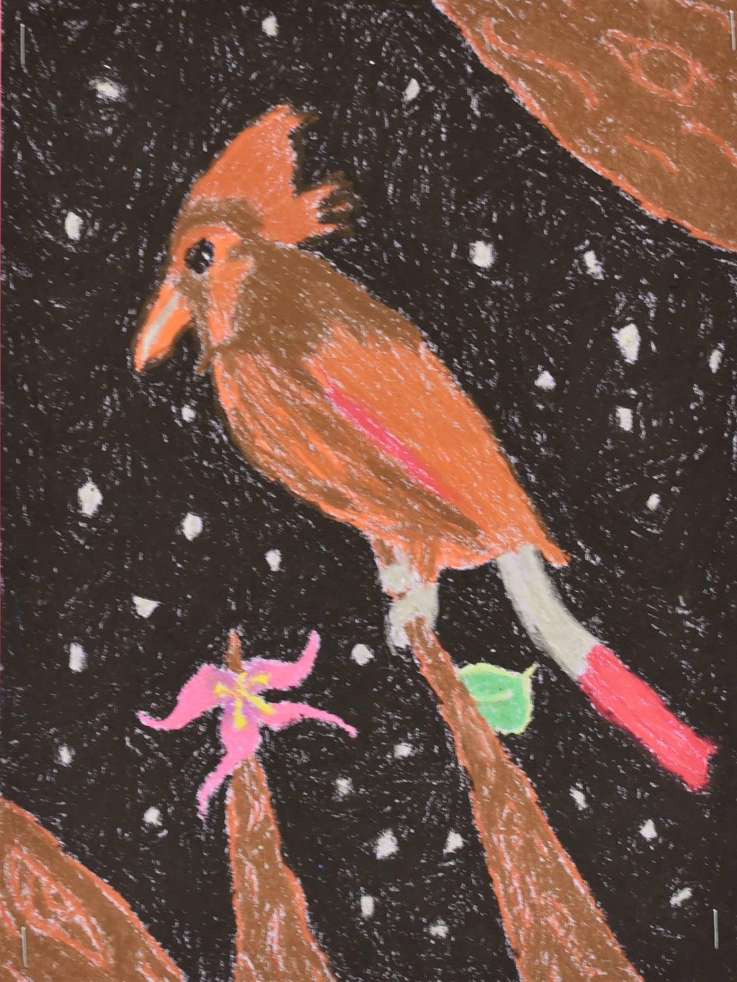 Brecksville-Broadview Hts. Middle School Art Projects 115