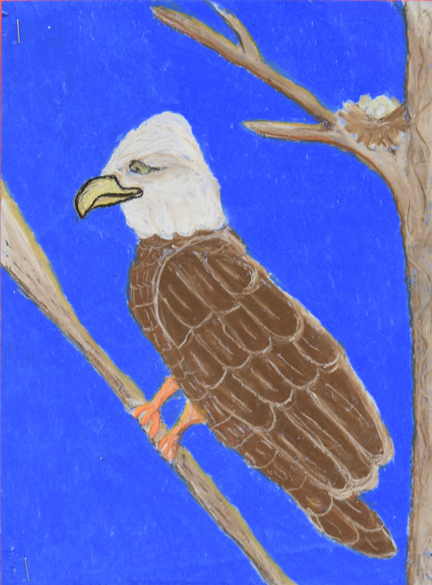 Brecksville-Broadview Hts. Middle School Art Projects 126
